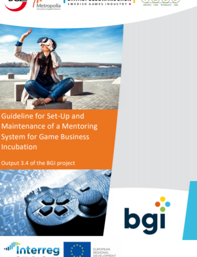 Baltic Game Industry Project: Guideline for Set-Up and Maintenance of a Mentoring System for Game Business Incubation